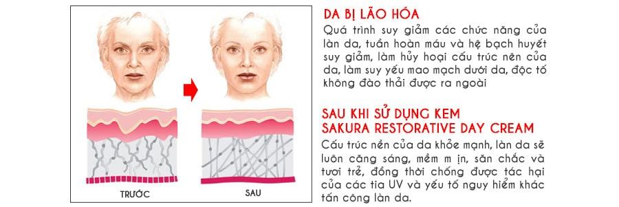 Hiệu quả Sakura Restorative Day Cream