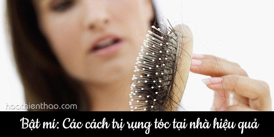 Bật mí các cách trị rụng tóc tại nhà hiệu quả