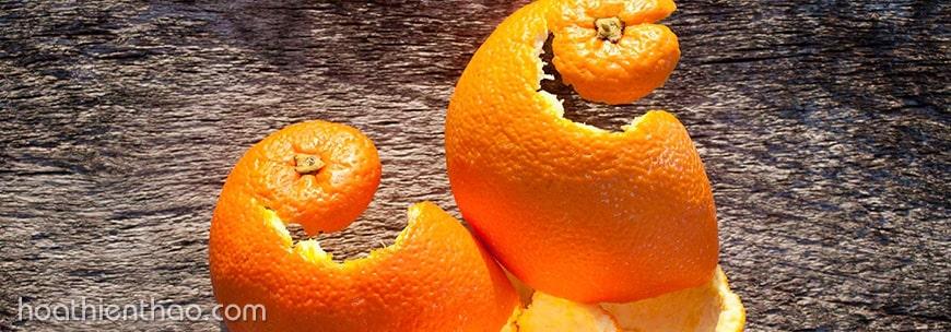 Cách trị nám hiệu quả với vỏ cam