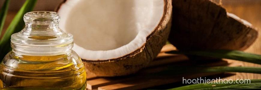 Chữa rụng tóc bằng dầu dừa và chanh tươi