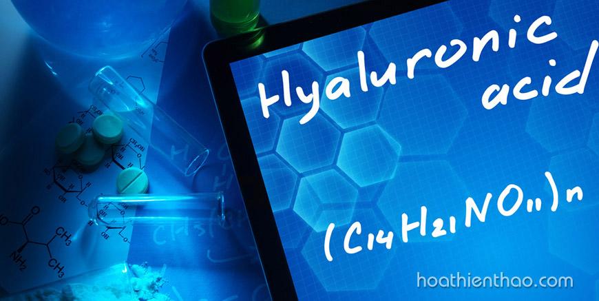 Điều bạn cần biết về dưỡng chất Hyaluronic Acid