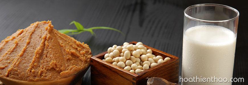 TOP thực phẩm giàu Collagen tốt cho da 5