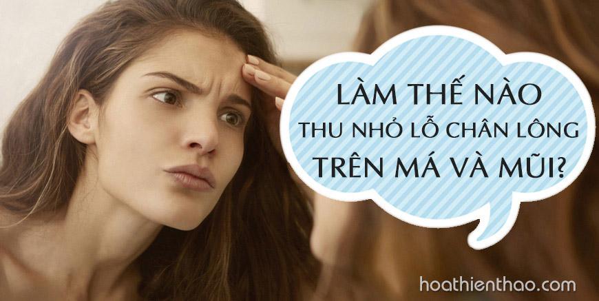 Làm thế nào thu nhỏ lỗ chân lông trên má và mũi?