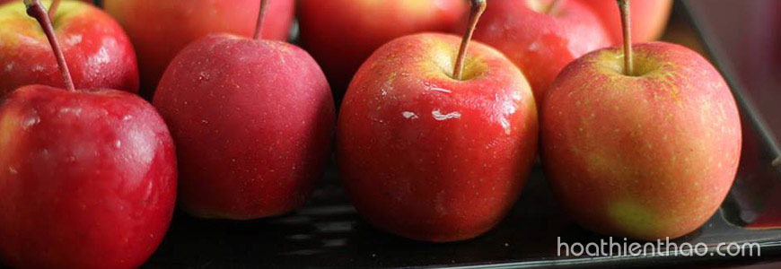 Thử công thức tẩy tế bào chết body từ táo, kết quả bất ngờ 1