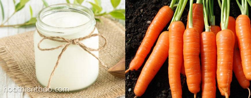Làm kem tắm trắng với cà rốt và sữa chua