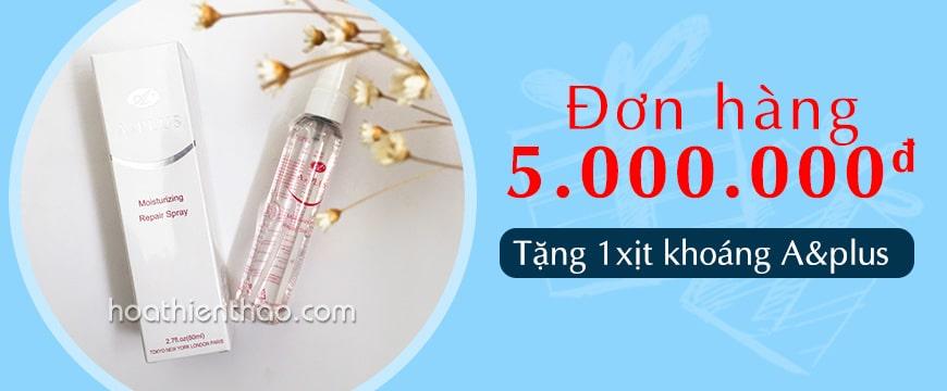 Xịt khoáng dưỡng ẩm A&Plus Moisturizing Repair Spray B010