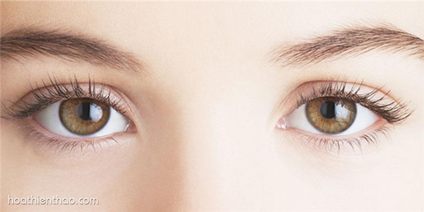 Chăm sóc cho vùng da quanh mắt để trẻ trung đầy sức sống hơn