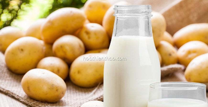 Mặt nạ sữa tươi khoai tây đánh bay thâm mụn