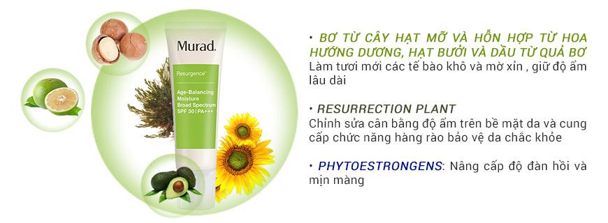 Thành phần Murad Age Balancing Day SPF30 PA+++