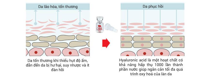 Công dụng Serum chống oxy hóa Hyaluronate Acid Essence A&Plus A017