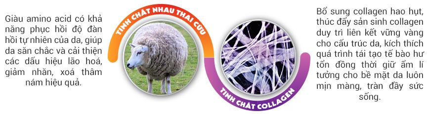 Công dụng tinh chất chống lão hóa J&K Sheep Placenta & Collagen