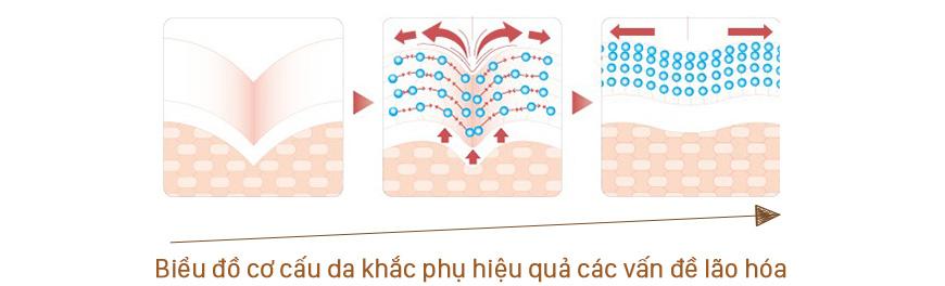 Viên serum giảm lão hoá Sakura Age Defying DNA 2