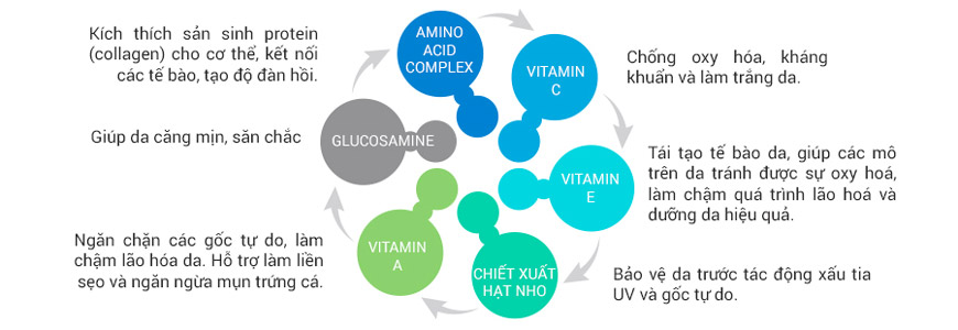 Viên uống trẻ hóa da giảm nếp nhăn Murad Youth Builder Collagen Supplement 4