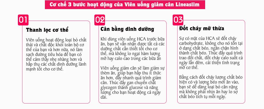 Cơ chế viên uống giảm cân Lineaslim Garcinia Cambogia 70% HCA