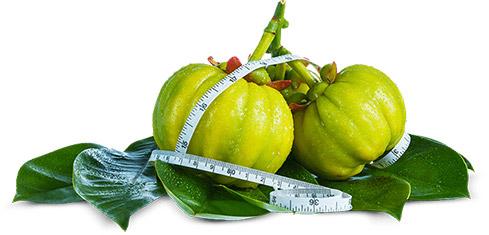 Viên uống giảm cân Nutrigold Garcinia Cambogia 5
